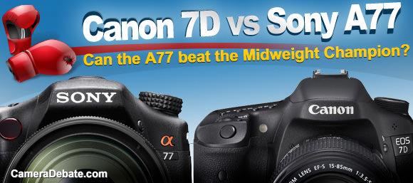 Canon 7D vs Sony A77 cameras