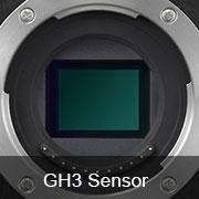gh3 sensor