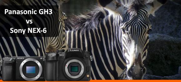Cameras zebras