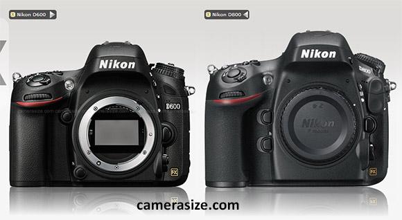 Nikon D800, D600 side by side