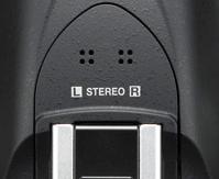 stereo mic