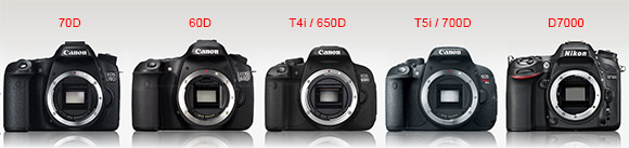 Canon Eos 70d Vs 60d Vs 7d Vs Rebel T4i 650d Vs Rebel T5i 700d Vs Nikon D7100