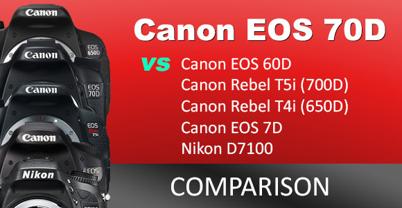 Canon and Nikon DSLR cameras on a red background