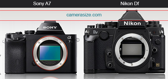 Sony A7 vs Nikon Df size comparison