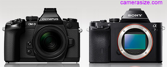 Olympus OM-D E-M1 and Sony A7 size comparison