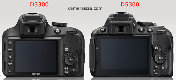 Nikon D5300 and D3300 side by side