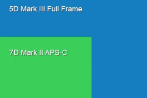 Sensor size comparison: 5D Mark III vs 7D Mark II