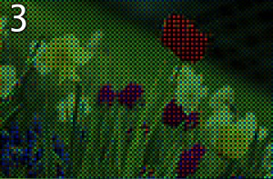 Bayer image output color-coded using Bayer filter colors