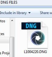 DNG file icon in Windows Explorer window