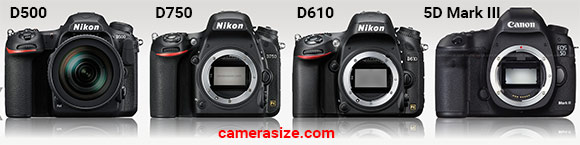 D500, D750, D610 and 5D Mark III side by side