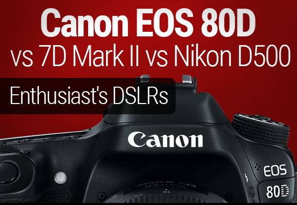 Canon 80D vs 7D Mark II vs Nikon D500